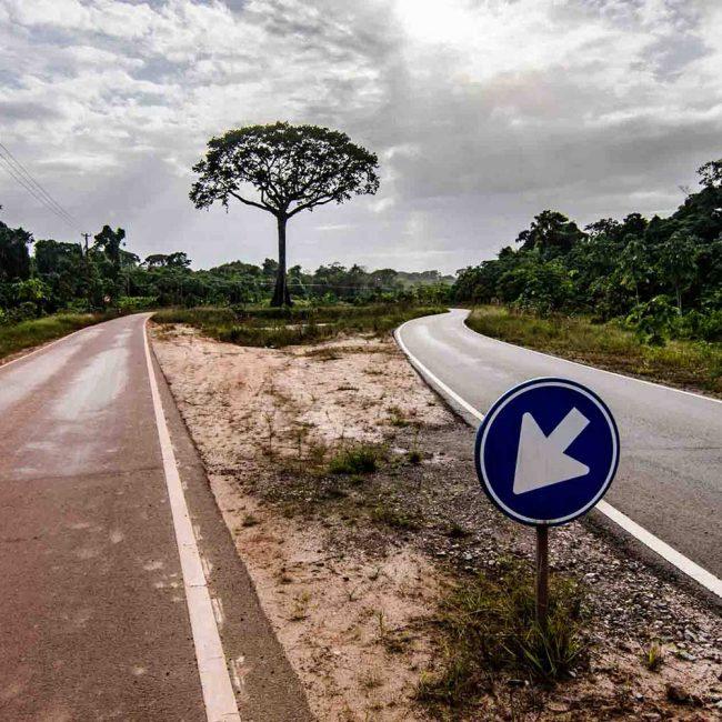 Between the roads | Photo: Dion C. Howard
