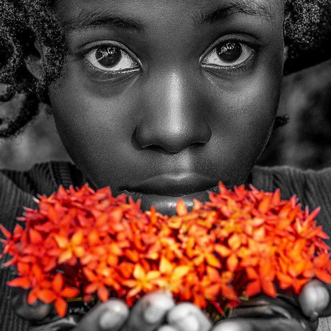 Fajalobi | Photo: Harvey Lisse