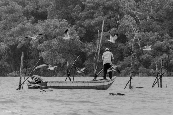 Fishing   Photo: Dion C. Howard