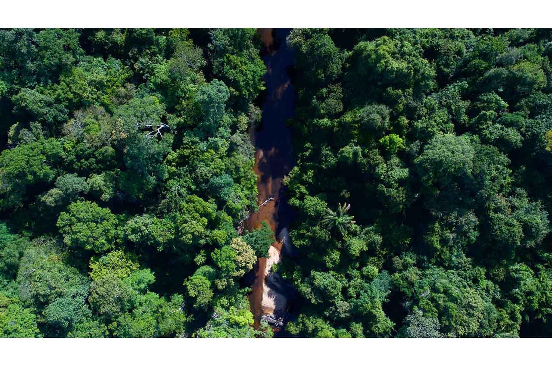 Hidden Rivers   Photo: Fabian Vas