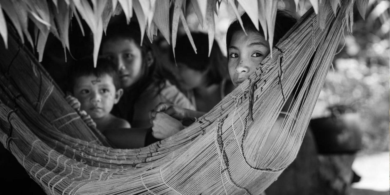 Prying Eyes | photographer: Rafael Jantz